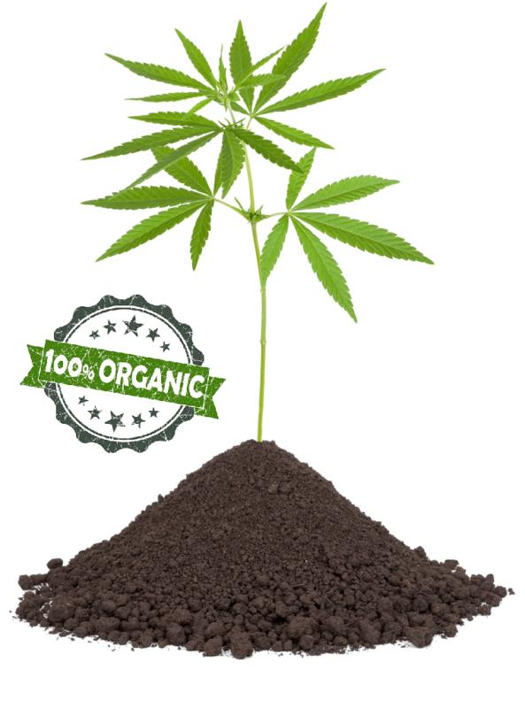 100% Organic Hemp