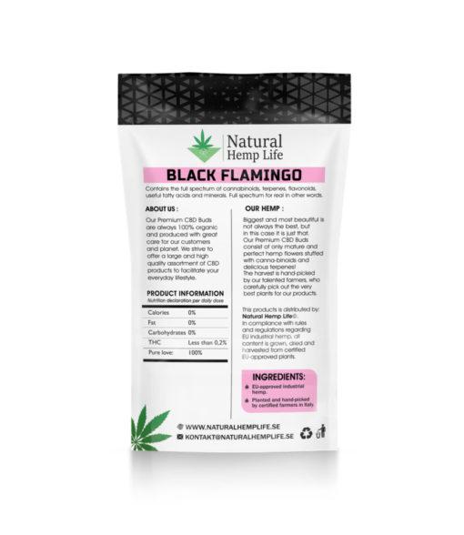 Black Flamingo Back